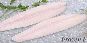 Frozen Fish (Ikan Beku)